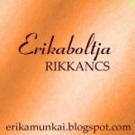 Erikabanner 150