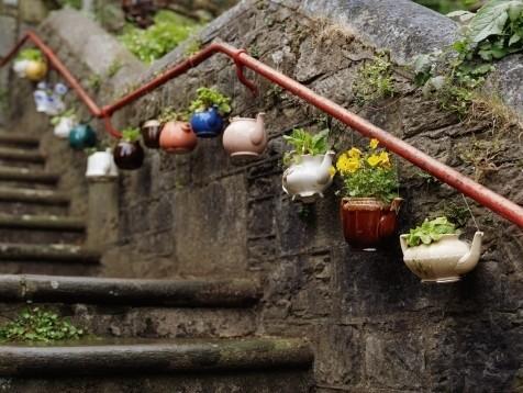 városi kertész / urban gardening