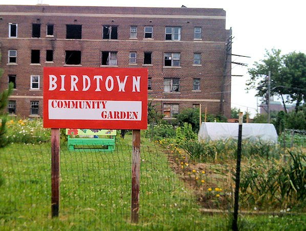 community gardening detroit