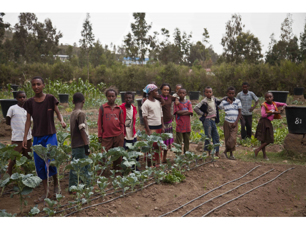 community gardening ethiopia
