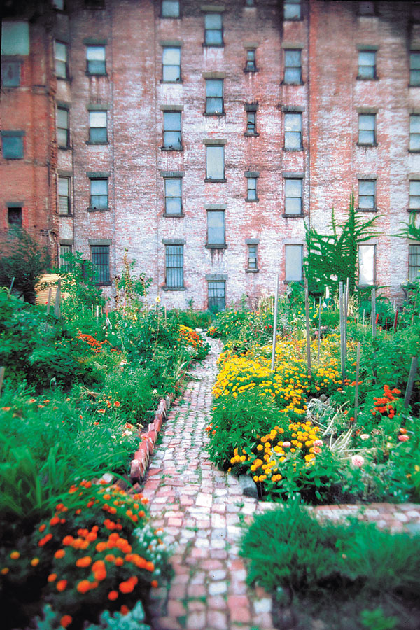 community gardening, new york