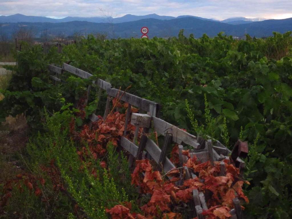 távolban Galícia