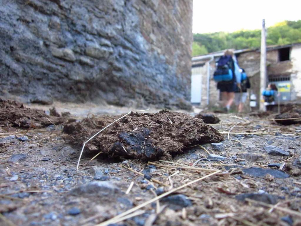 galiciai falu