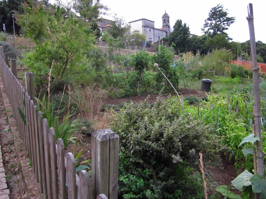 közösségi kert santiagoban
